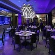 The Atlantic Grille - The Seagate...