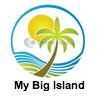 Big Island Transportation