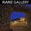 Rare Galleries